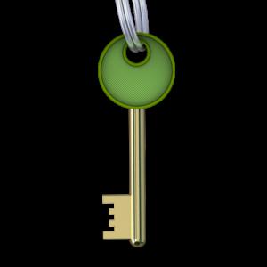Этот ключ к игре предназначен для одного компьютера. То есть, вы можете установить игру и активировать ее на одном компьютере.